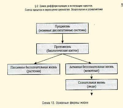 Схема 13. Основные формы жизни